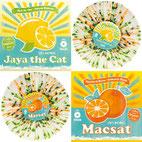 Jaya the Cat/MACSAT - Split