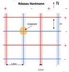 Schéma d'un réseau Hartman