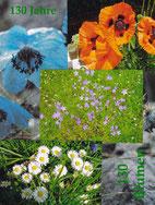 130 Blumen, Collage