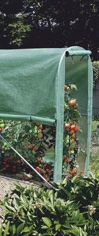 ©Nortene, Tomato Greengousse, serre tunnel pour potager, culture de tomates