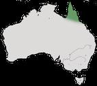 Karte zur Verbreitung des Zitronenhonigfressers