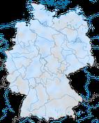Birkenzeisig (Winter)