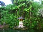 Tempel & Heilige Plätze