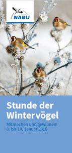 Bild: NABU - Stunde der Wintervögel