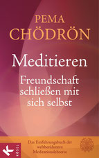 Anzeige TOP Bestseller Empfehlungen - Meditieren - Freundschaft schließen mit sich selbst  von Pema Chödrön