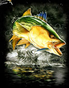 poisson nageur blackbass