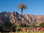 circuit de Marrakech au sud Maroc