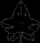 Logo der Seite Efeutraum
