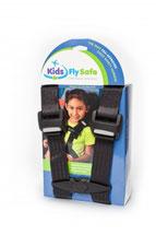 Bild Cares Sicherheitsgurt für das Flugzeug.