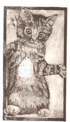 """""""Kätzchen"""" Radierung mit Aquatinta"""