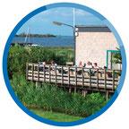 Gruppenhaus Friesland am Tjeukemeer