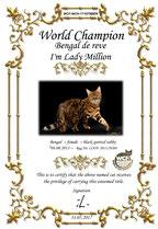 Bengal championne du monde WCF