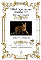 Bengal campeona del mundo WCF