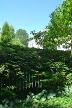 Wohnung im Herzogpark
