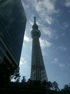 スカイツリー(東京)