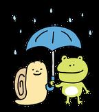 梅雨 カエル
