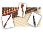 Tina Zweimüller,  Unterhaltung, Barock, Zelenka, Händel, Kammermusik, Ensemble, Mieten, Konferenz, Hochzeit, Geburtstag, Konzertreihe, Schaffhausen, Zürich, Winterthur, Fagott, Oboe, Cembalo, Geige, Violine, Triosonate, Musik, Event, Spass, Barock