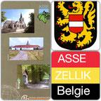 Wedvlucht Asse Zellik Belgie