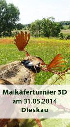 Maikaeferturnier 3D am 31.05.2014 in Dieskau