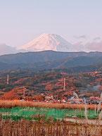 R2.1.1富士山