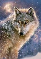 Wolfswissen ´- Link