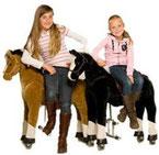animal riding animalriding horseriding paardrijdennieuw vennep, hillegom, lisse, sassenheim, oegstgeest, haarlem, leiden, alphen, hoofddorp, badhoevedorp, aalsmeer, kudelstaart,schiphol, bollenstreek, haarlemmermer