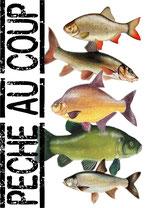 idée cadeau du pecheur poisson blanc