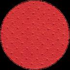 bezug22 red / peddur