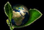 Associations en relation avec l'Environnement