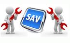 SAV GFS-colliers