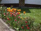 Sparangebot für Frühling und Herbst