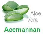 L'un des composants les plus importants est l'Acemannan. Il a une influence positive sur le système immunitaire et diminue d'autre part les inflammations et les radicaux libres.