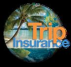Trip Insurance Icon