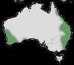 Karte zur Verbreitung des Weißohr-Honigfressers in Australien.