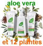 Gel aloe vera et propolis avec LR Health and Beauty systems