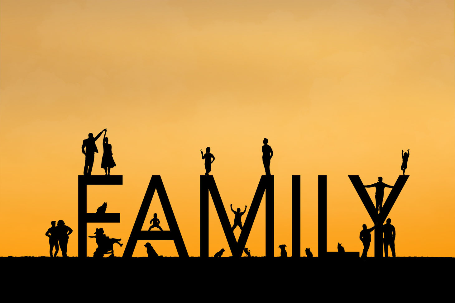 silhouettes of 13 people and 7 pets arranged around the letters FAMILY. Sky is orange.