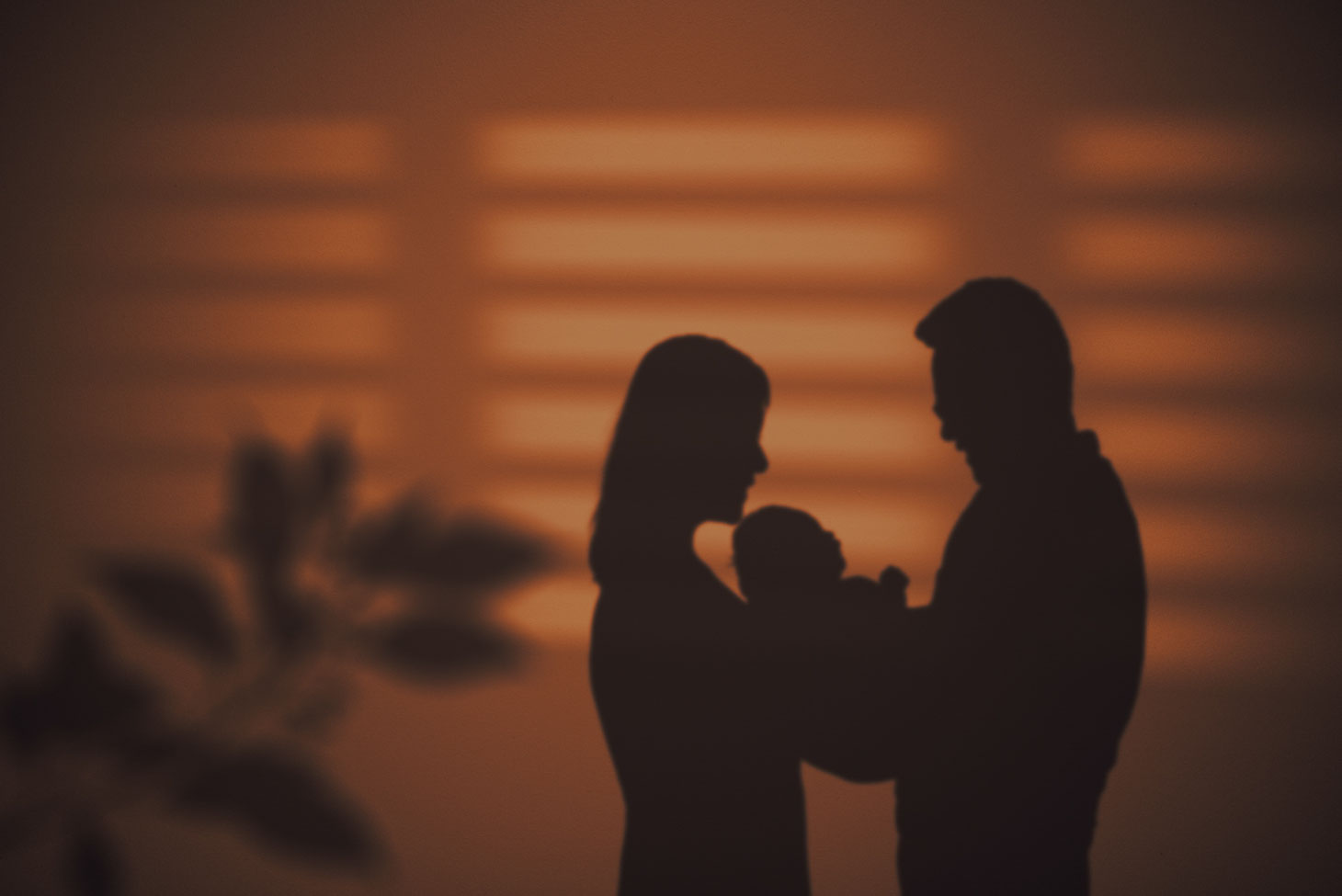 silhouette of a shadow of a branch, a mother, a new baby, and a father against a wall. Light from window also casts shadows of a blind on the wall. Wall is a pinkish-orange colour.