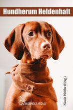 Reisen mit Hund Hoover, einem Flat Coated Retriever.