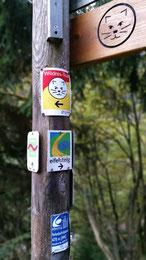 Eifel Wildnis Trek Eifelsteig outdoor-pur
