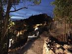 Eclairage exterieur d'un jardin à Marseille 13006 dans le quartier de vauban