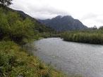 梓川もかなり増水している