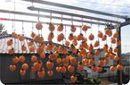 2018年の干し柿
