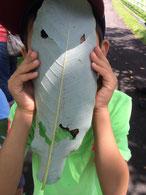 自然体験ツアーで。葉っぱで作ったお面