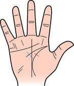掌には様々な線やマークが表れますが、相互の線が干渉し運勢に影響を与えます。
