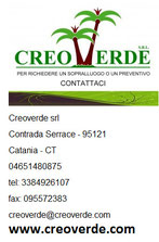 Concesionario per Sicilia