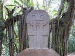 Kriegerdenkmal zwischen Wurzeln