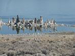 Tufftürme im Mono Lake