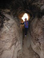 Wanderwege führen durch umgefallene Sequoia-Baumstämme