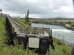 Am Yukon nahe Whitehorse ist die längste Fischtreppe der Welt. Die Lachse müssen freilich auch hier gegen den Strom schwimmen.