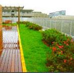 アスベスト除去・ビル緑化